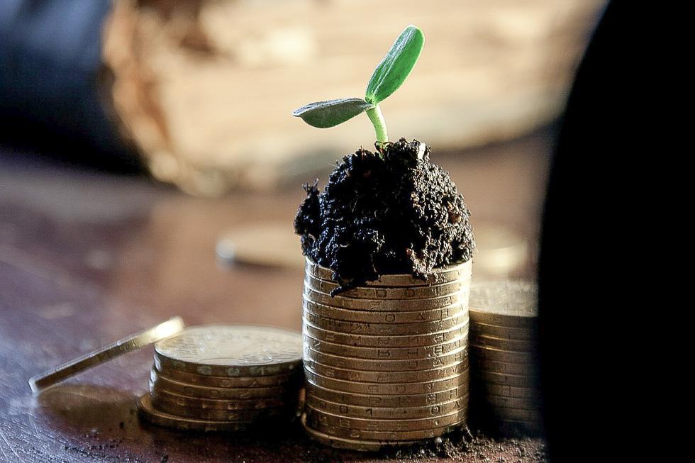 Einen Online-Shop starten als kleines oder mittleres Unternehmen (1)