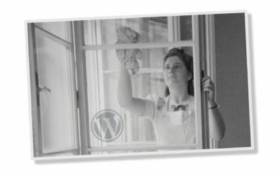 Schwarzweiß-Bilde einer Fenster putzenden Frau, WordPress Logo links unten